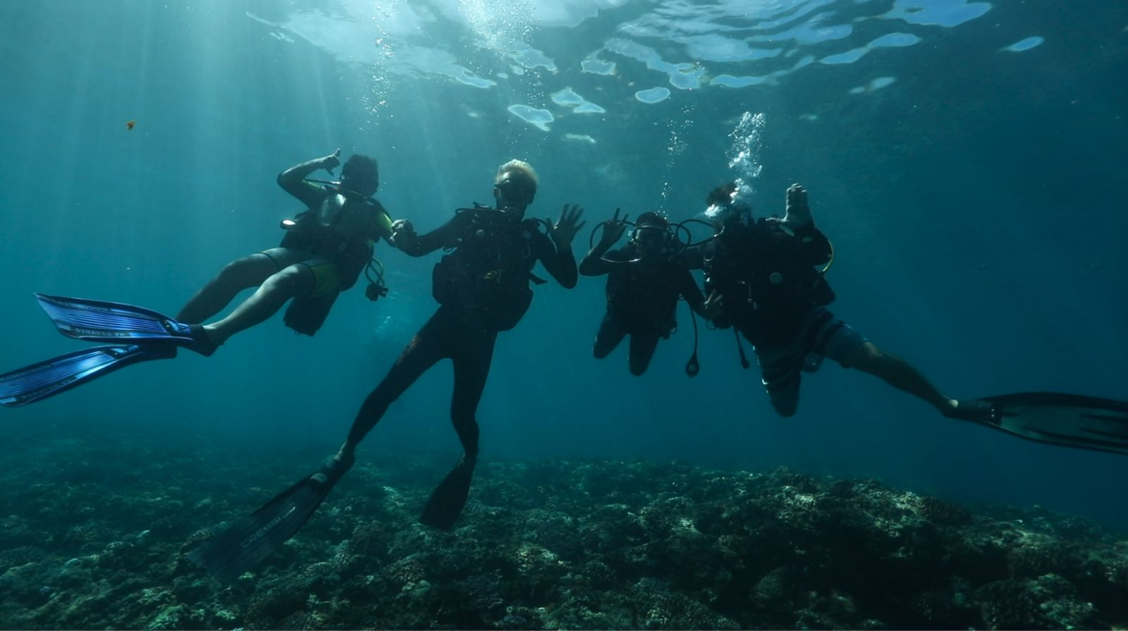 <center>Plongée : Les marmailles de 1000 Sourires <br>à la découverte de la biodiversité marine