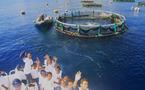 « Voyage aquatique pour les marmailles  de 1000 Sourires »